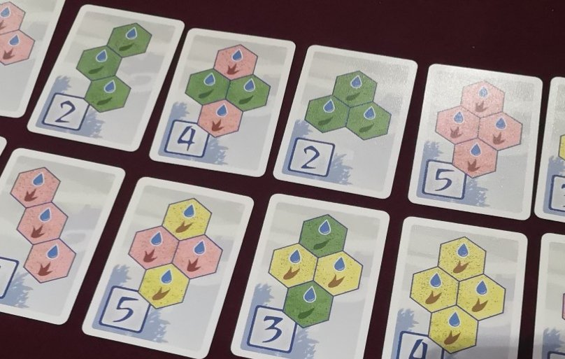 Takenoko Objective Cards - Land Plots