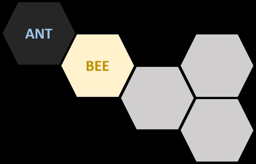 Hive Beetle 2
