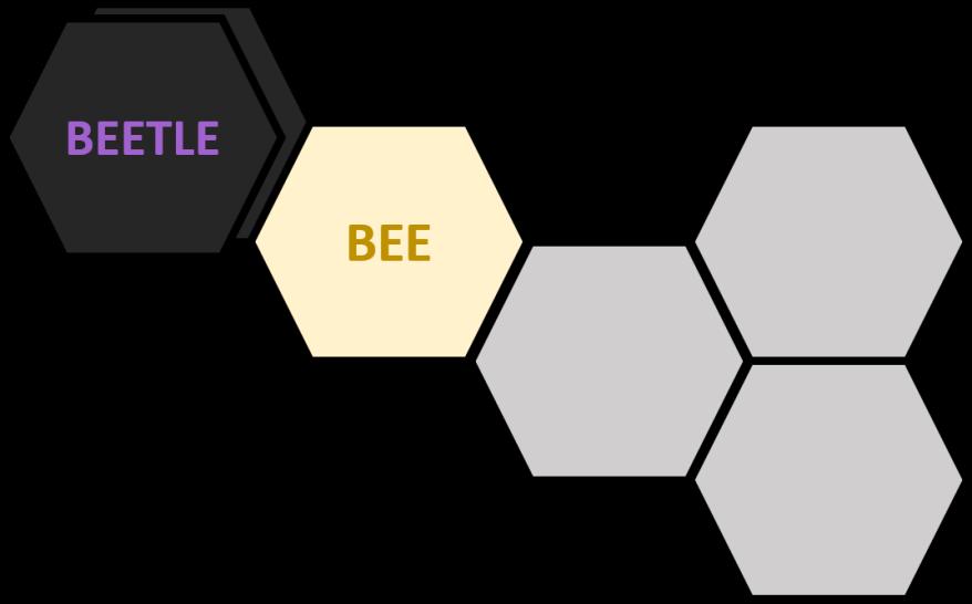 Hive Beetle 4